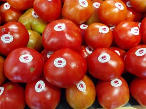 grainger county tomatoes